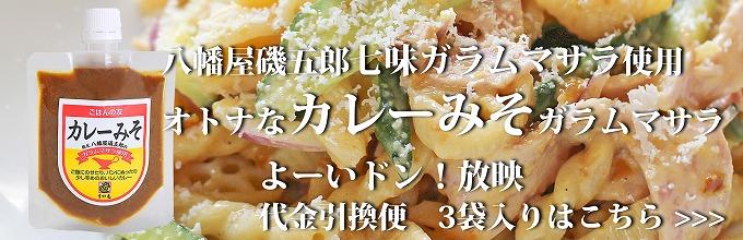 ガラムマサラカレーみそ よーいドン放映 すや亀カレーみそガラムマサラ120g  調理味噌 食卓の友